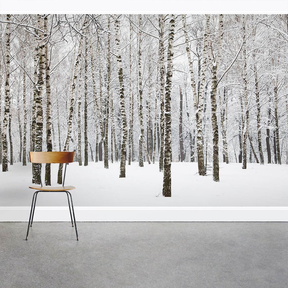 Winter birch tree forest wall mural for Birch tree forest wall mural