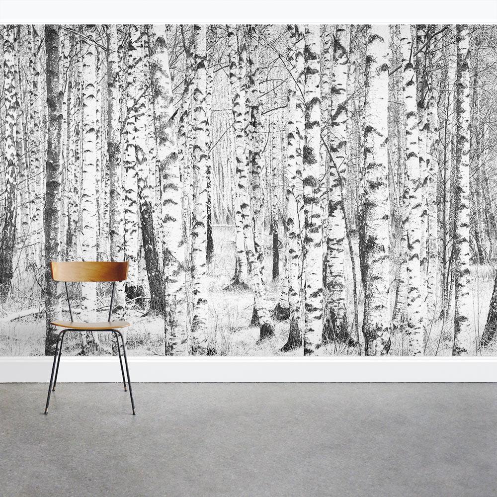 Winter birch trees wall mural for Birch trees wallpaper mural
