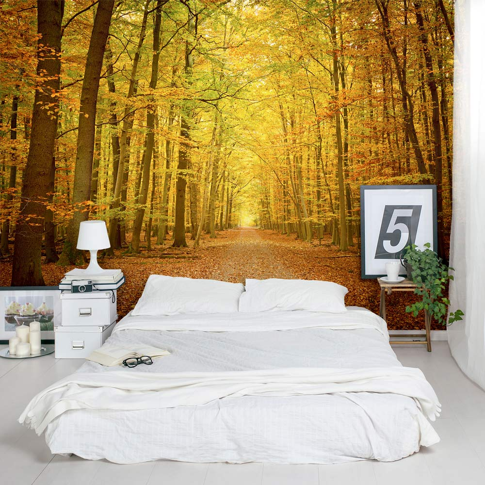 Autumn forest path wall mural for Autumn tree mural
