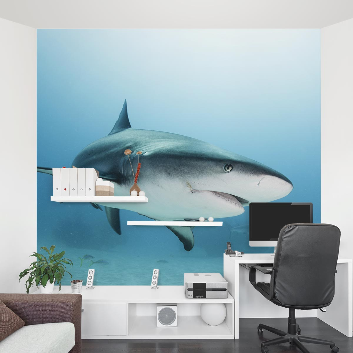 caribbean reef shark wall mural popular shark wall murals buy cheap shark wall murals lots