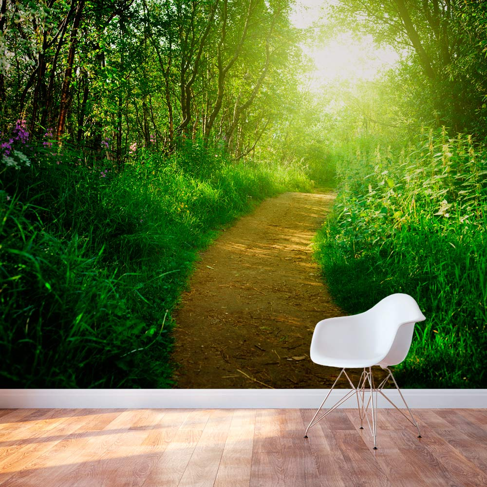 nature 39 s path wall mural