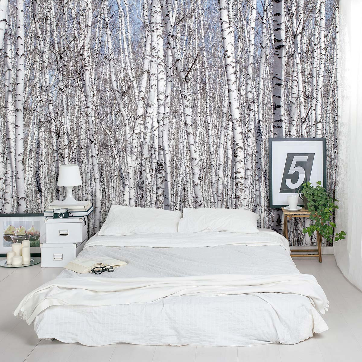 White birch trees wall mural for Decoration maison original