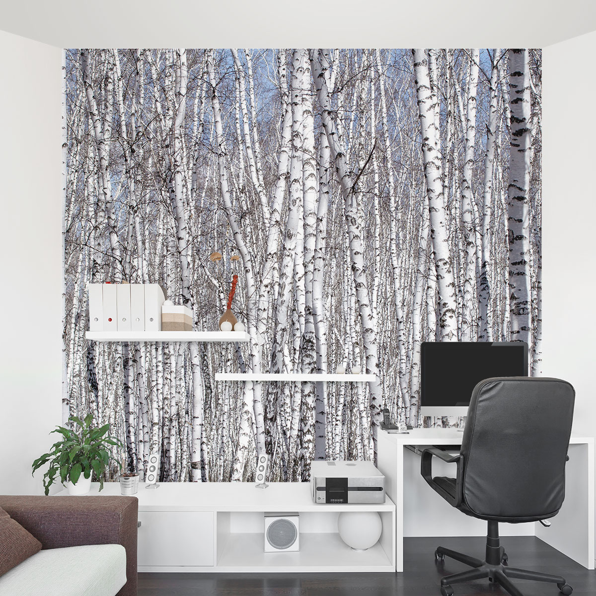 White birch trees wall mural for Design wall mural