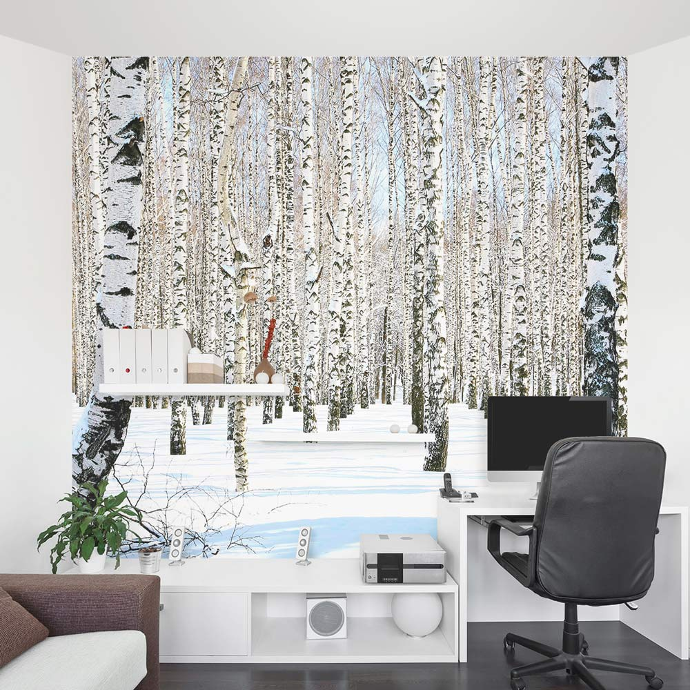 Birch tree wall mural winter birch tree wallpaper for Design wall mural