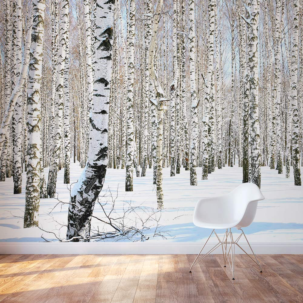 Birch tree wall mural winter birch tree wallpaper for Birch tree forest wall mural