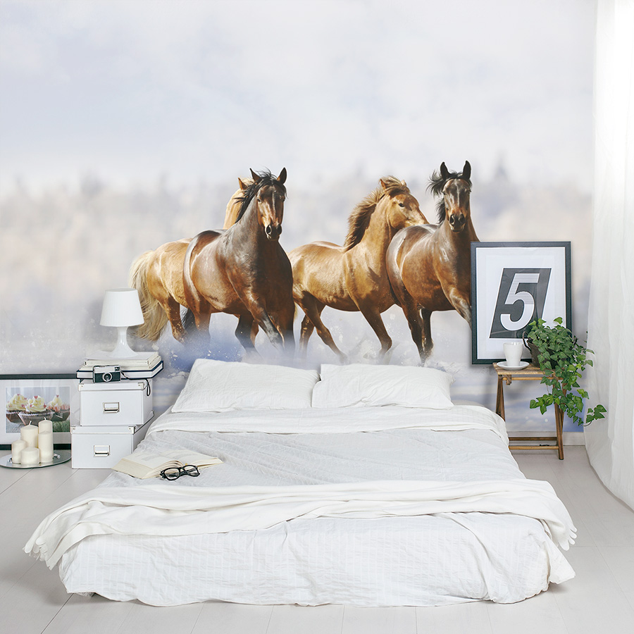 Best images collections hd for gadget windows mac android for Equestrian wall mural