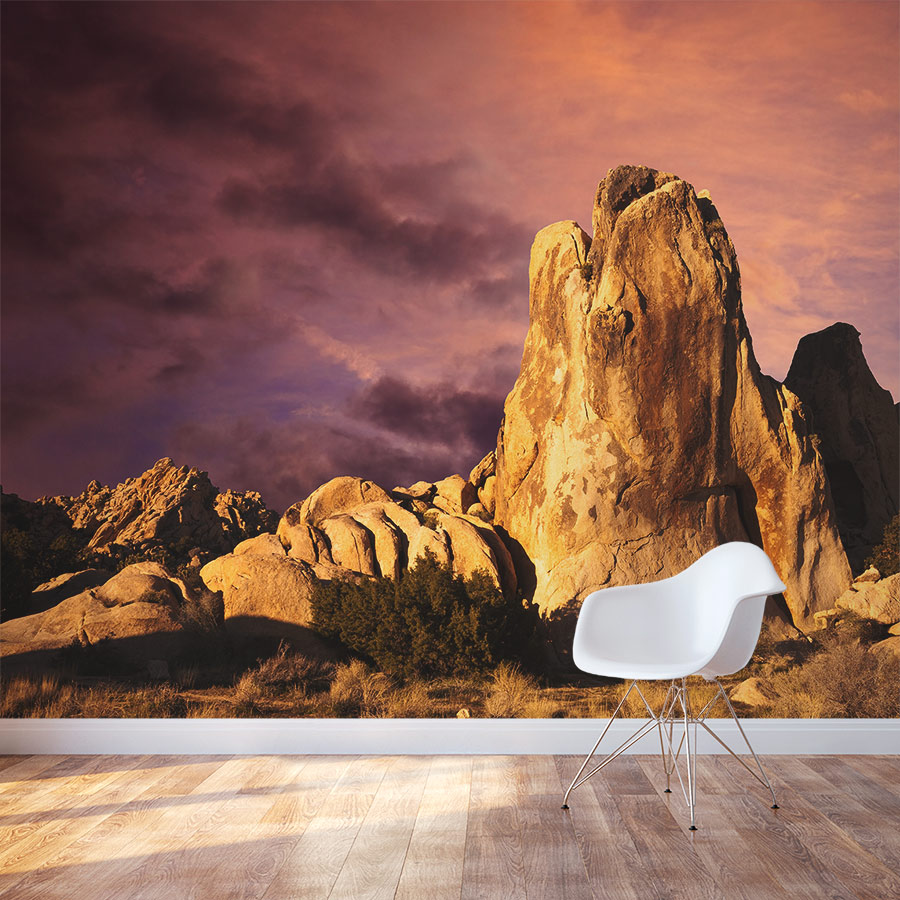 Mojave desert sunrise wall mural for Desert wall mural