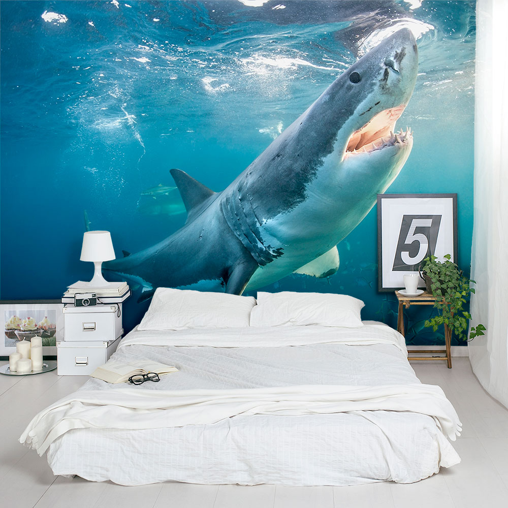 Great White Shark Wall Mural Great White Wallpaper