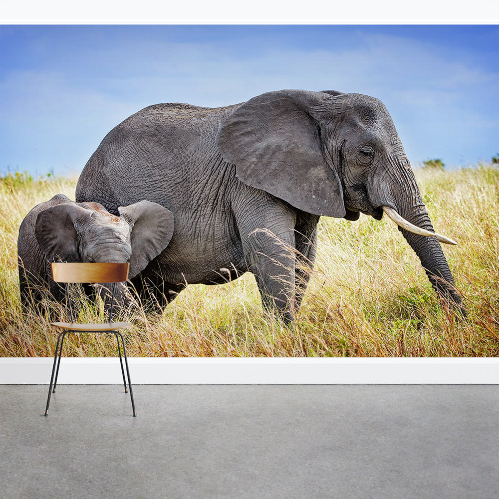 Mama And Baby Elephant Wall Mural