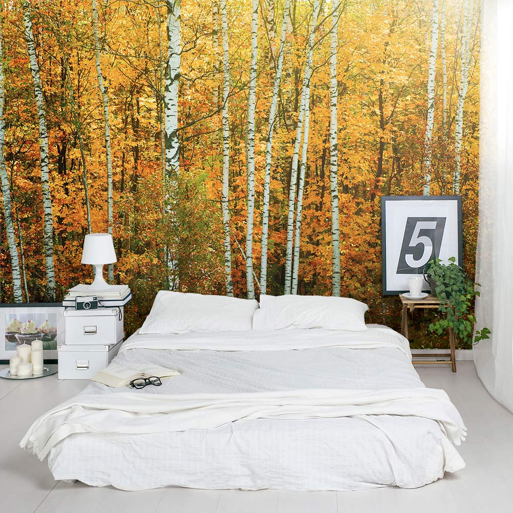 Autumn birch tree forest wall mural for Tree wallpaper bedroom