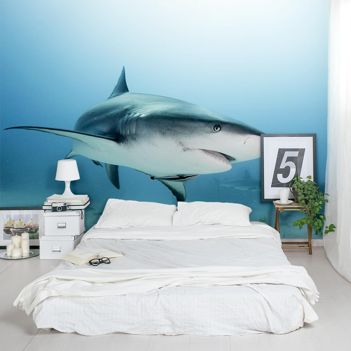 Caribbean Reef Shark Wall Mural ...