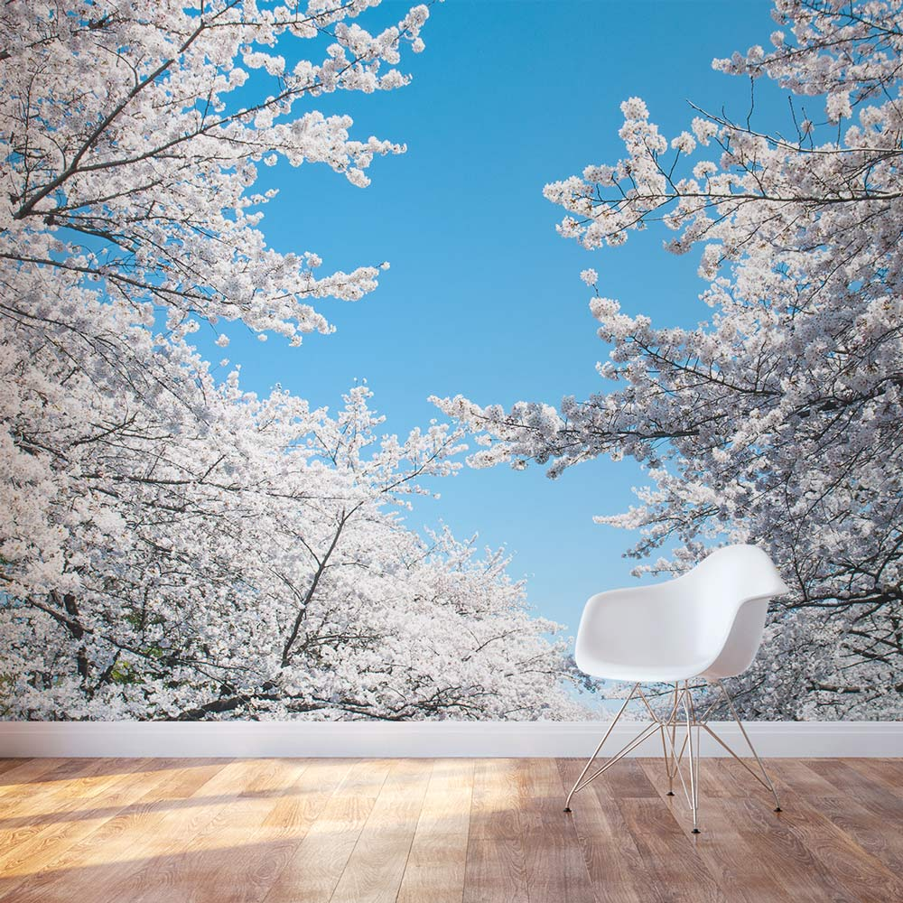 White Cherry Blossom Wall Decal Cherry Blossom Tree Wall Mural