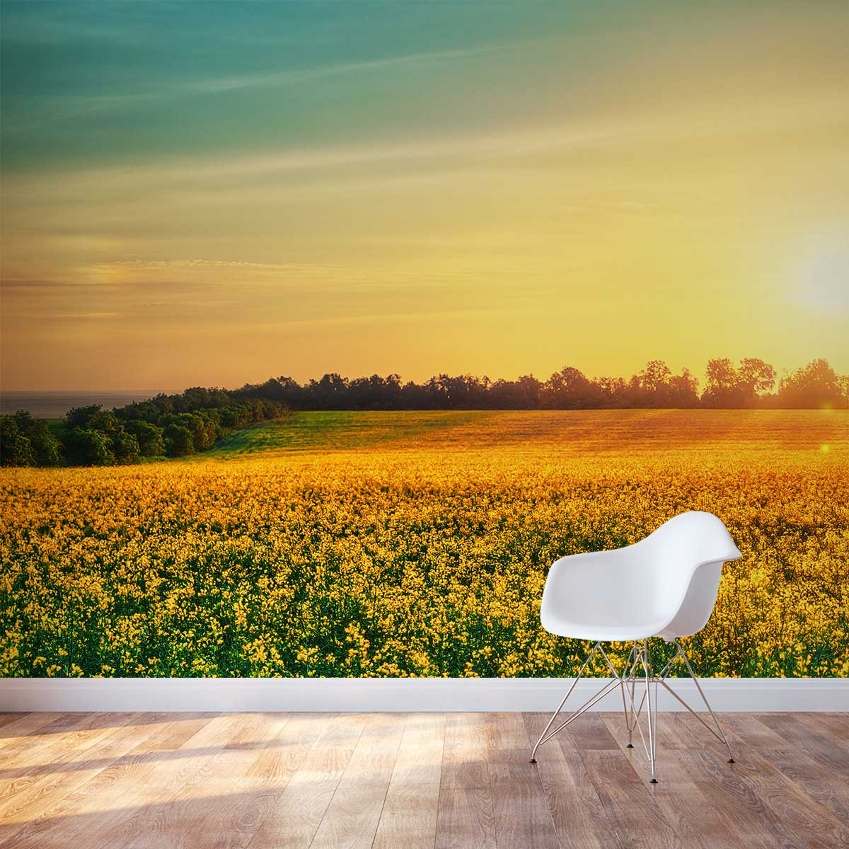 Flower field sunset Tall Grass Field Wall Decals Wall Decals Wallums Flower Field At Sunset Wall Mural