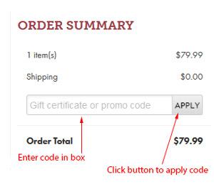 Promo code box example