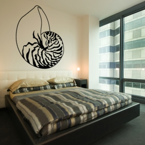 Sea shell wall decal