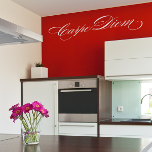 Carpe Diem Wall Quote Decal