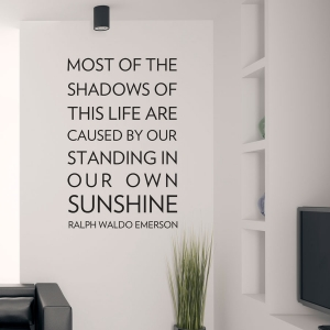 Most of the shadows wall decal