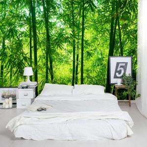 Chinese Timber Bamboo Trees Wall Mural