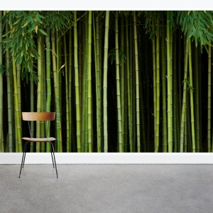 Bamboo Stalk Forest Wall Mural