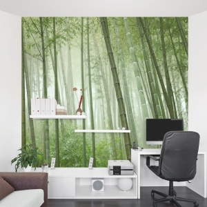Bamboo Grove Office Wall Mural