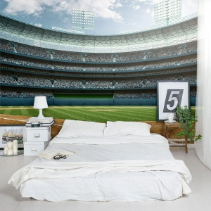 Baseball Star Wall Mural