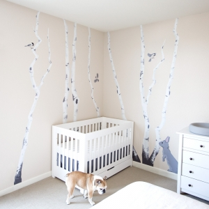 Winter Birch Tree Forest Printed Wall Decal
