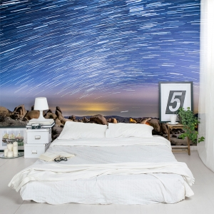 Shooting Stars Wall Mural