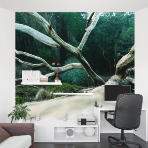 Fallen Tree Wall Mural