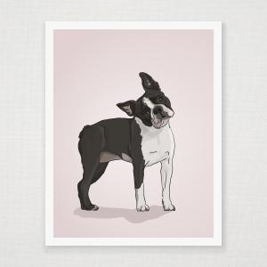 Boston Terrier  Wall Art Print