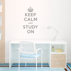 Keep calm and study on wall decal