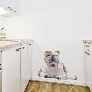 English Bulldog Wall Decal