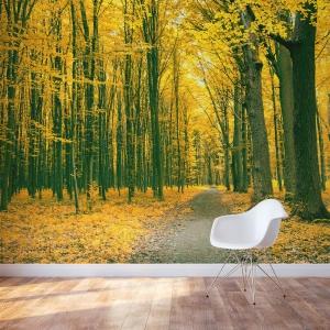 Golden Autumn Forest Wall Mural