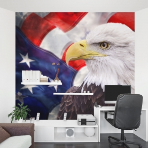 American Bald Eagle Office Wall Mural