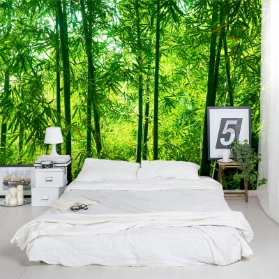 Chinese Timber Bamboo Trees Wall Mural