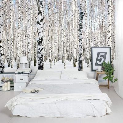 Snow Dense Winter Birch Tree Forest Wall Mural
