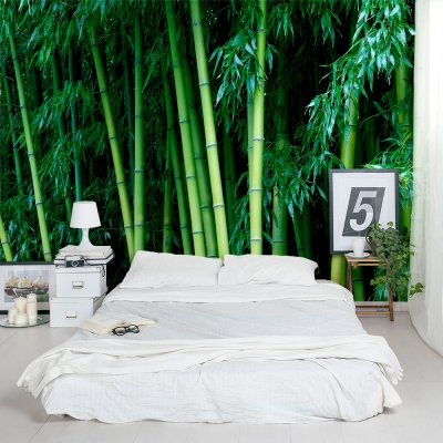 Bamboo Hideaway Wall Mural