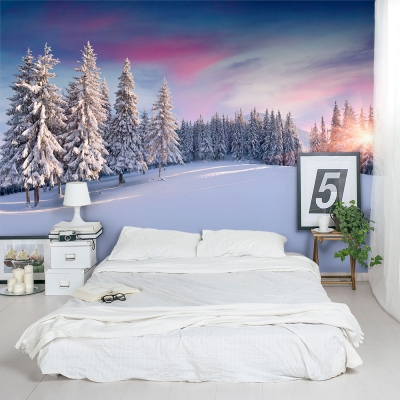 Aspen Sunrise Wall Mural