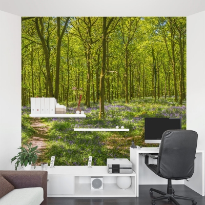 Woodland Trail Wall Mural