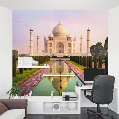 Morning at the Taj Mahal Wall Mural