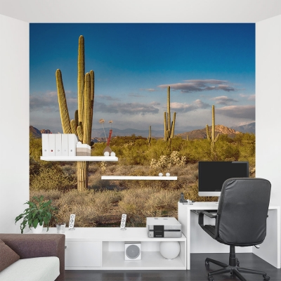 Sunset at Superstition Mountain Wall Mural
