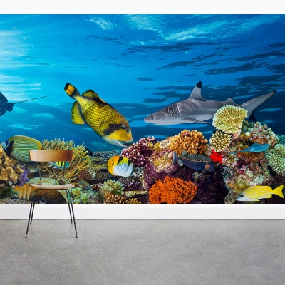 Underwater Sea Life Wall Mural