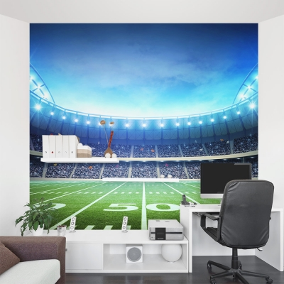 Lights on the Field Wall Mural