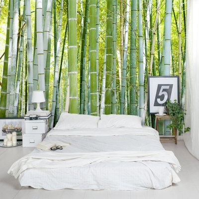 Thick Bamboo Forest Mural Bedroom