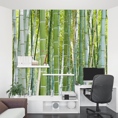 Thick Bamboo Forest Mural Office