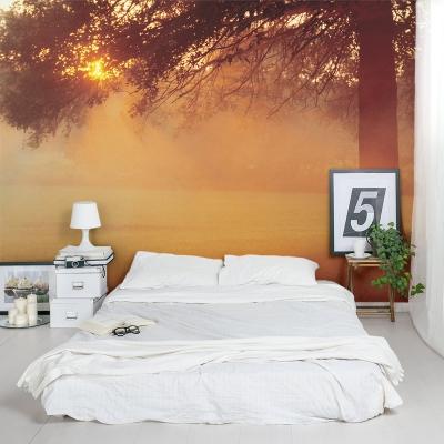 Sunset Tree Wall Mural