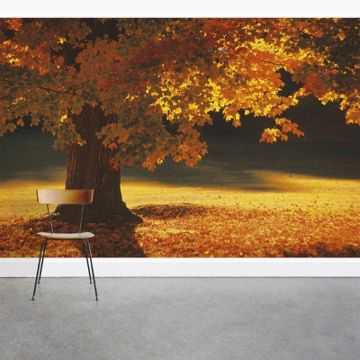 Under the Maple Tree Wall Mural