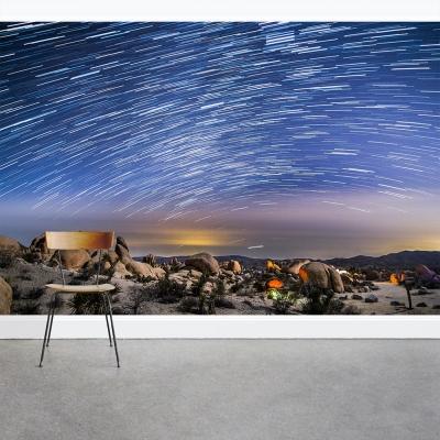 Shooting Stars Wall Mural