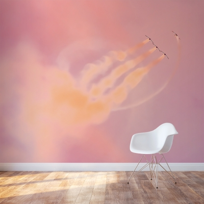 Airborne Wall Mural
