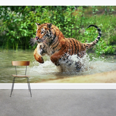 Tiger Pounce Wall Mural
