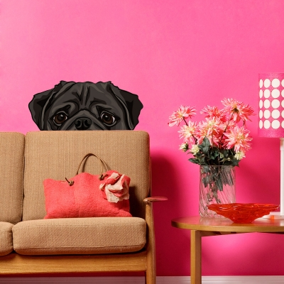 Peekaboo Pug Dog Wall Decal